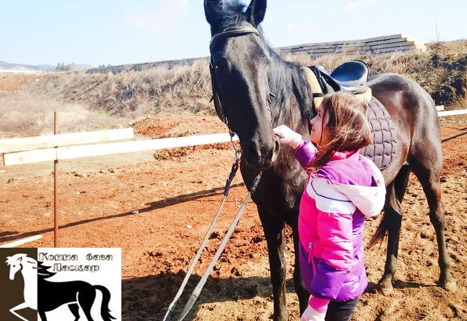 Отпуснете с конна база Ласкар! ВКлючва Конна езда и обучение в грижа за конете