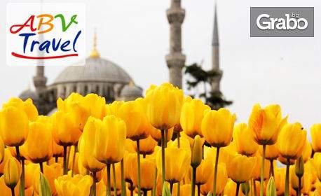 Ваканция в хотел 2 или 3*, Истанбул за пет дни! Включени транспорт и закуски! Посетете Фестивала на лалето!