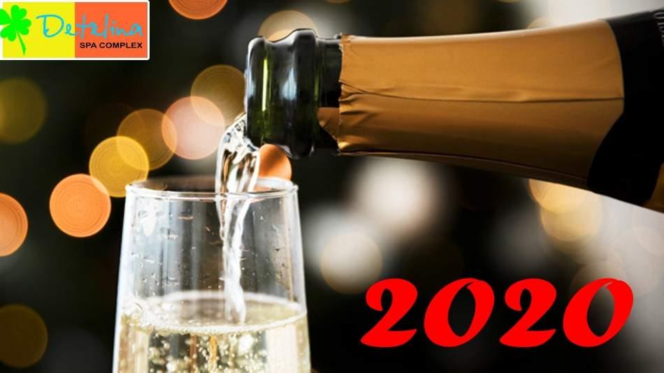 Посрещнете 2021-ва година в Детелина, Хисаря! Включва зона за релакс!