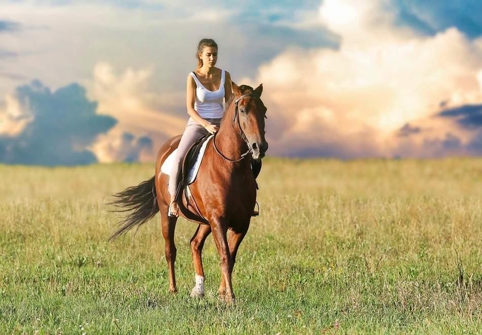 """4 дни обучение по конна езда (180 мин.) + преход по избор от конна база """"София – Юг"""""""