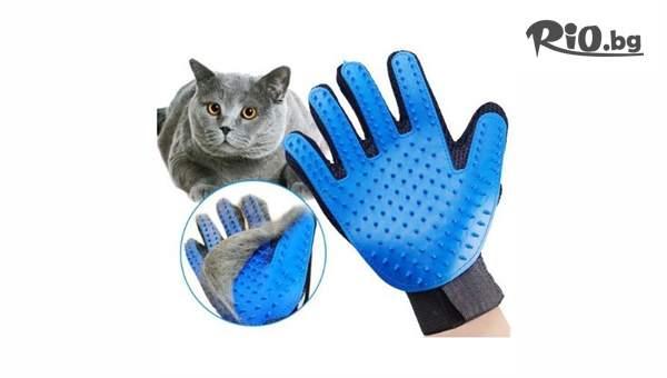 Масажираща ръкавица за обиране на косми от домашни любимци, от Svito Shop