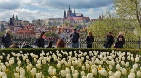 САМО 295 лв.! ПРАГА - ЗЛАТНИЯТ ГРАД! Транспорт с АВТОБУС + 3 нощувки със закуски в Прага + Посещение на шопинг градчето Парндорф + Водач