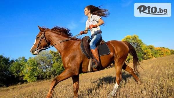 Забавление на Витоша! 45 минути разходка-езда на кон с 55% отстъпка, от Конна база София - Юг