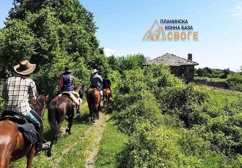 Детски рожден ден за 10 или 15 деца с конна езда и игри до 4 часа от Планинска конна база Своге